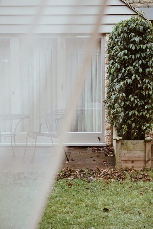 Terrasse med alger og flisepest